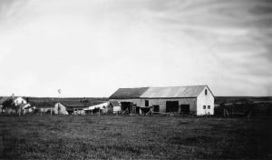 Homestead Early Years